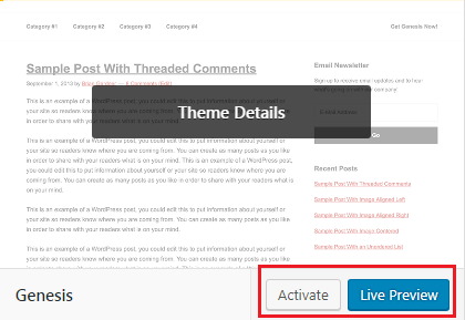 Preview or activate WP theme